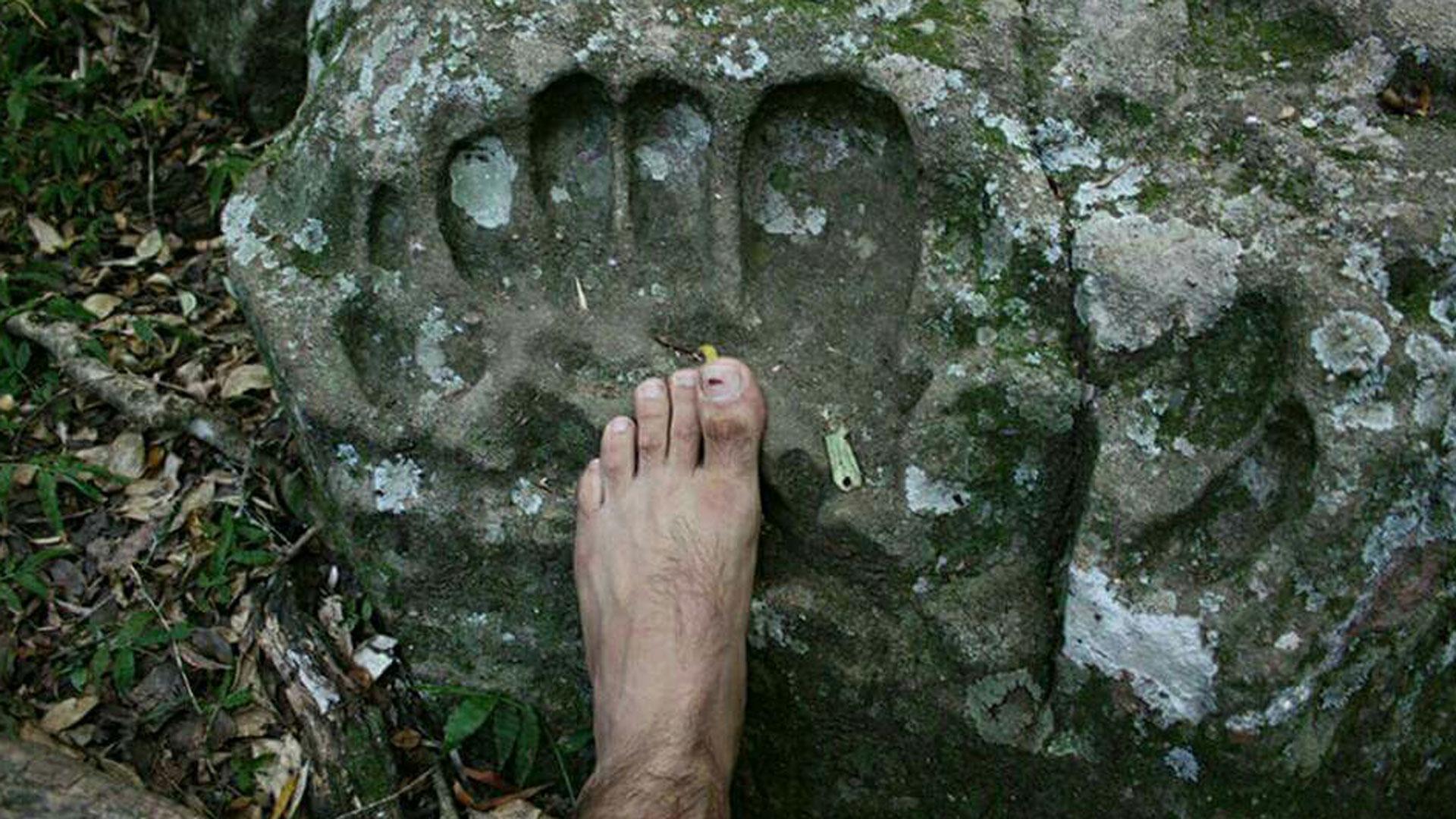 Fußabdruck eines Riesen in versteinertem Schlamm.